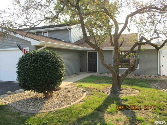 48 Brookside Place, Springfield, IL 62704 (#CA1009840) :: Kathy Garst Sales Team