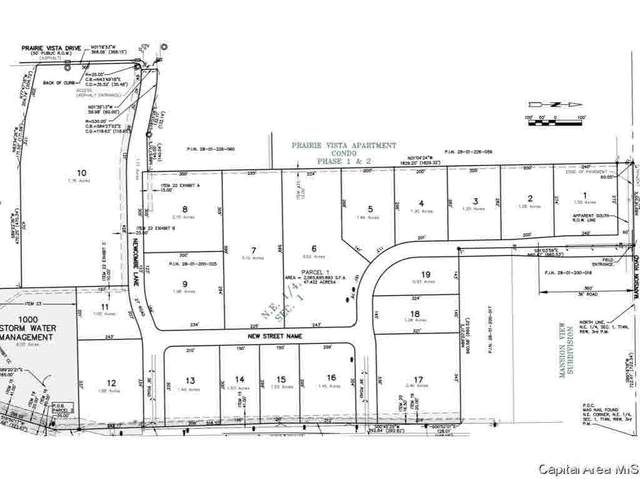 1529 N Main, Chatham, IL 62629 (#CA183338) :: Paramount Homes QC