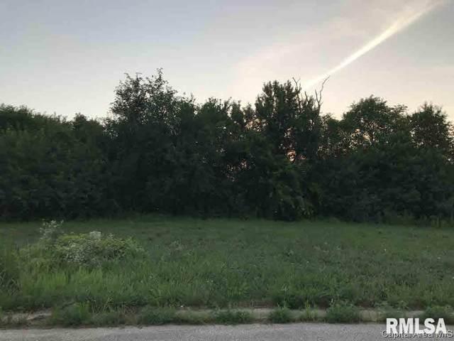 1036 Ravina Drive, Chatham, IL 62629 (#CA192240) :: Paramount Homes QC