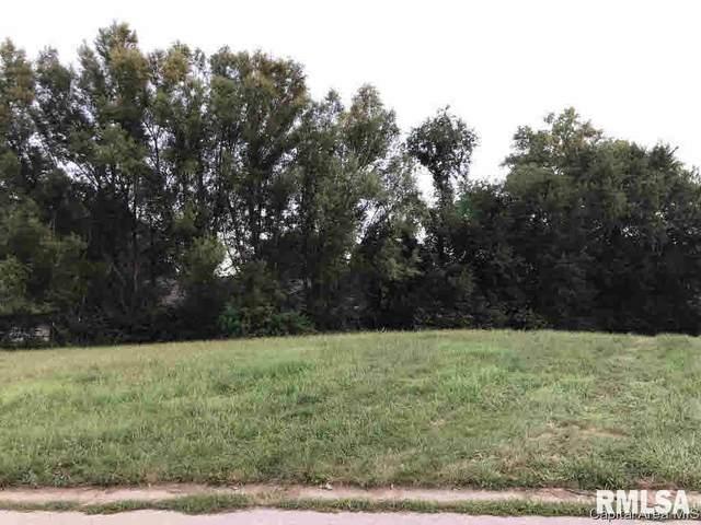 1048 Ravina Drive, Chatham, IL 62629 (#CA192245) :: Paramount Homes QC