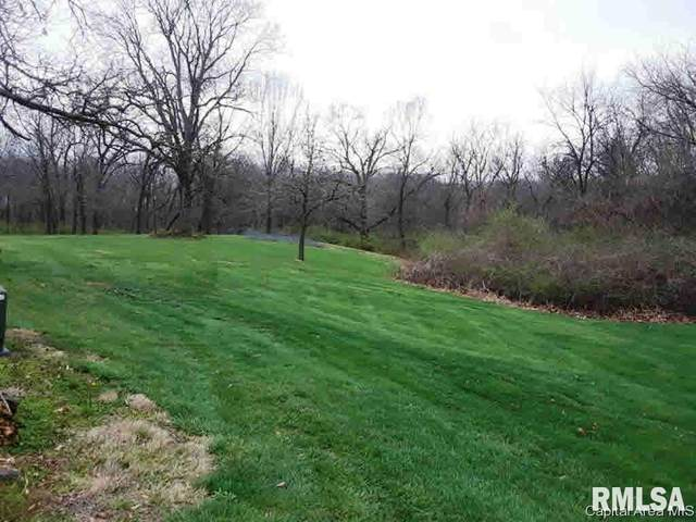 Lot 17B Gregory Court, Carlinville, IL 62626 (#CA182362) :: Kathy Garst Sales Team