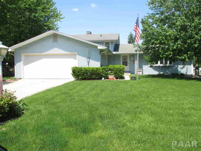 3211 E Rene Avenue, Chillicothe, IL 61523 (#1181366) :: Adam Merrick Real Estate