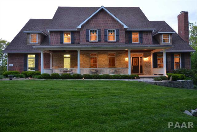 828 W Savanna Court, Dunlap, IL 61525 (#1183590) :: Adam Merrick Real Estate