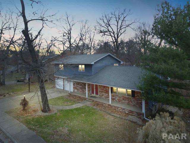 1015 W Hiawatha, Dunlap, IL 61525 (#1190124) :: Adam Merrick Real Estate