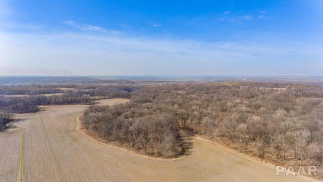 000 Blue Heron Road, Lacon, IL 61540 (#1190514) :: Adam Merrick Real Estate