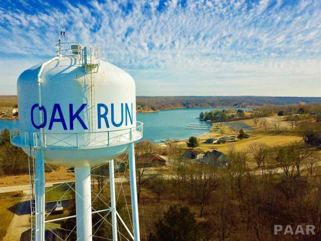 328 Rustic Oak Court, Dahinda, IL 61428 (#1192399) :: Adam Merrick Real Estate