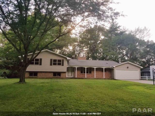 453 High Point Drive, Peoria, IL 61614 (#1192493) :: Adam Merrick Real Estate