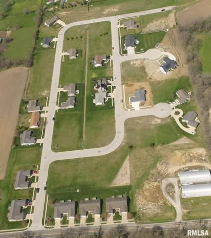 Lot 47 Parkview Drive, Eureka, IL 61530 (#PA1195393) :: RE/MAX Professionals