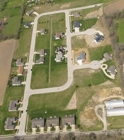 Lot 48 Parkview Drive, Eureka, IL 61530 (#PA1195396) :: RE/MAX Professionals