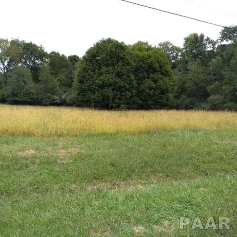 783 Lake Wildwood Drive, Varna, IL 61375 (#PA1196725) :: Paramount Homes QC