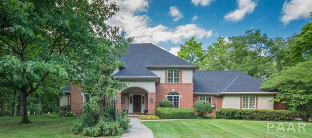 11723 N Strathmoore Court, Dunlap, IL 61525 (#PA1197644) :: The Bryson Smith Team