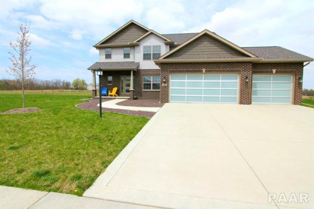 609 W Copper Ridge Court, Dunlap, IL 61525 (#PA1203709) :: Adam Merrick Real Estate