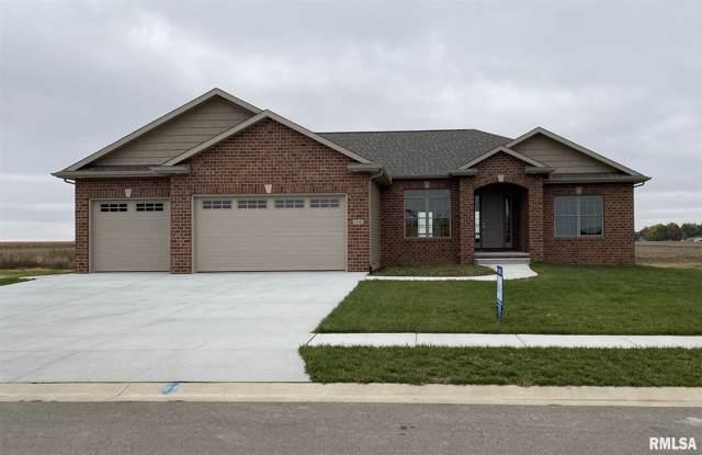 1205 Lightstone Court, Sherman, IL 62684 (#CA996214) :: Killebrew - Real Estate Group