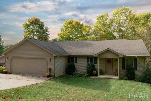 349 Rustic Oak, Dahinda, IL 61428 (#PA1182656) :: The Bryson Smith Team