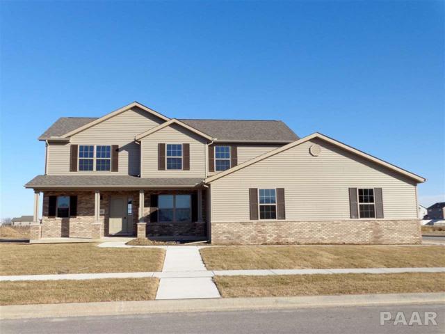 725 Labrador Way, Washington, IL 61571 (#1187944) :: Adam Merrick Real Estate