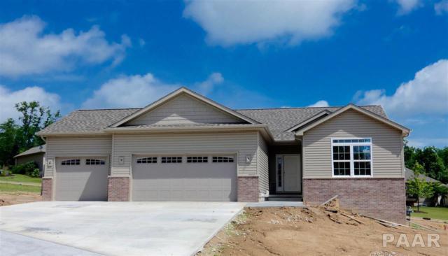 6124 N Lauren Lane, Peoria, IL 61614 (#1191144) :: Adam Merrick Real Estate