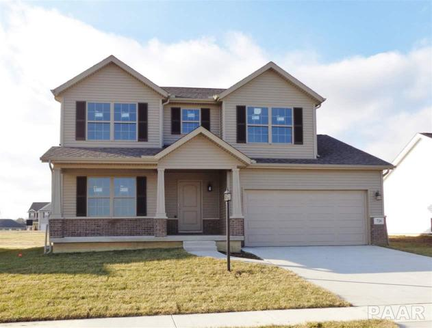 726 Labrador Lane, Washington, IL 61571 (#1196994) :: The Bryson Smith Team