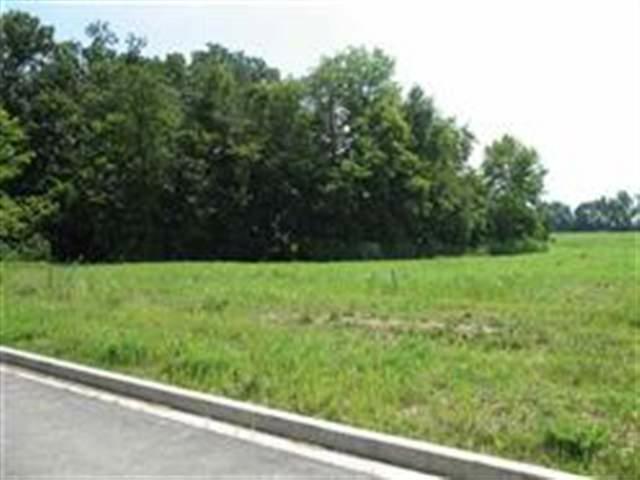 Lot 8 Amelia Drive, East Peoria, IL 61611 (#PA1131381) :: Adam Merrick Real Estate