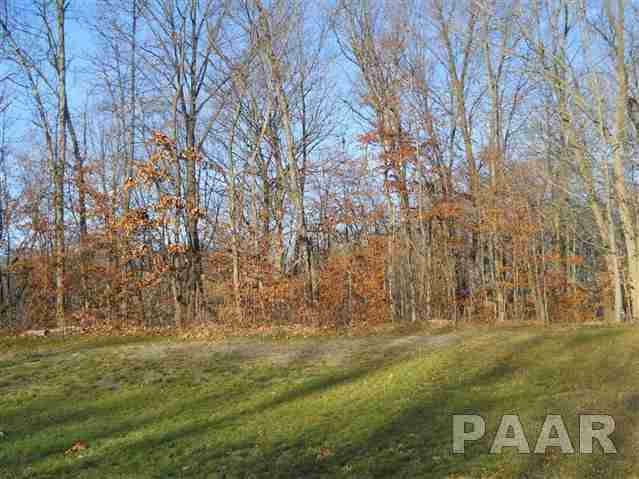 306-Lot 21 Greenview, East Peoria, IL 61611 (#PA1140547) :: The Bryson Smith Team