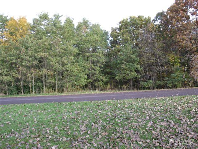 Lot 25 Schmitt Lane, Edwards, IL 61528 (#PA1149726) :: Paramount Homes QC