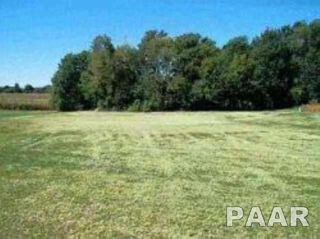 Lot 13 Eagle Drive, Lacon, IL 61540 (#PA1169785) :: Adam Merrick Real Estate