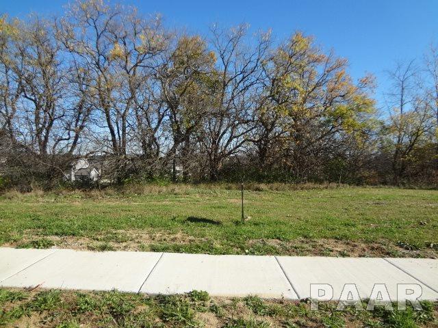 11416 N Boulder Creek Court, Dunlap, IL 61525 (#PA1178808) :: Adam Merrick Real Estate