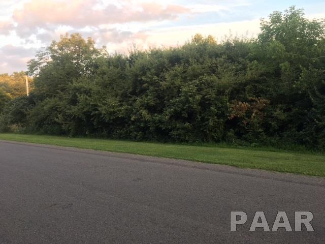 Unit 6 Lot 58 Heritage Drive, Mackinaw, IL 61755 (#1186879) :: Adam Merrick Real Estate