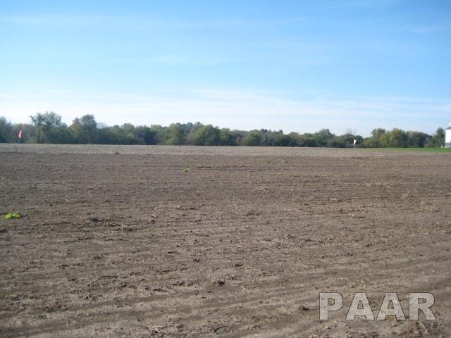 1000 Dieble Road, Washington, IL 61571 (#1188812) :: Adam Merrick Real Estate