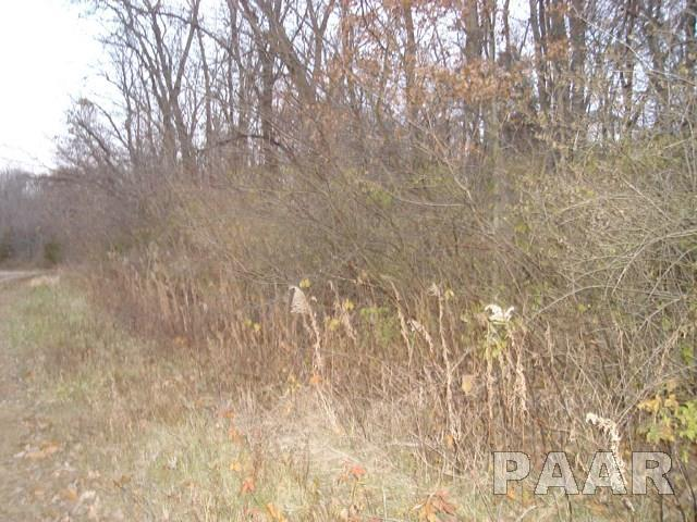Dickison Cemetery Road, Dunlap, IL 61525 (#1189658) :: RE/MAX Preferred Choice