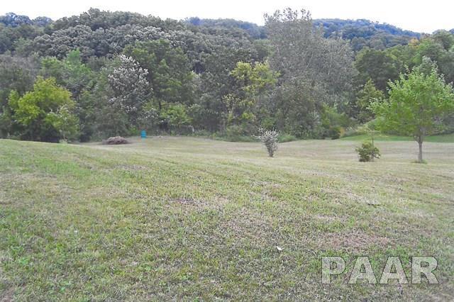 715 E Santa Fe Road, Chillicothe, IL 61523 (#1190734) :: Adam Merrick Real Estate