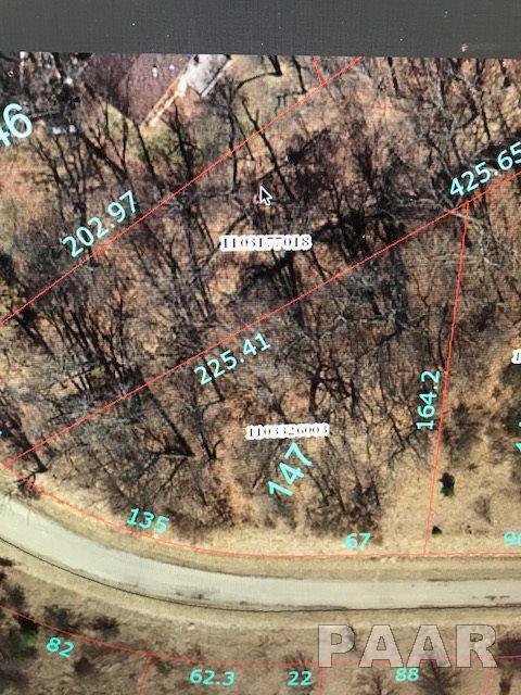 Lot 147 Forest View Road, Dahinda, IL 61428 (#1191843) :: Adam Merrick Real Estate