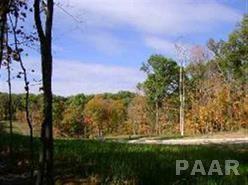Lot 81 Wolf Crossing, Morton, IL 61550 (#PA1192480) :: Adam Merrick Real Estate