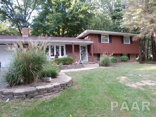319 Northern Oaks, Groveland, IL 61535 (#1192650) :: Adam Merrick Real Estate
