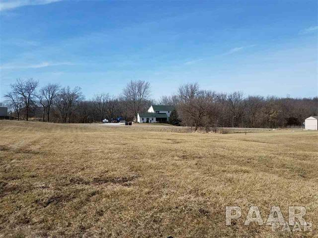505 N Brad, Hanna City, IL 61536 (#PA1199431) :: Adam Merrick Real Estate