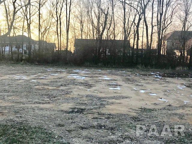 1841 Whitetail Lane, Pekin, IL 61554 (#1200284) :: Adam Merrick Real Estate