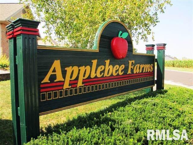 62 Applebee Farms Drive, Jacksonville, IL 62650 (#CA2406) :: The Bryson Smith Team