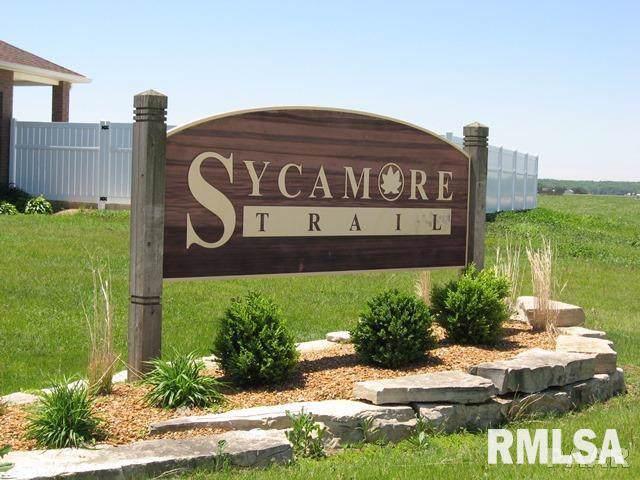 1705 Fieldstone Drive, Chillicothe, IL 61523 (#PA1211464) :: Killebrew - Real Estate Group