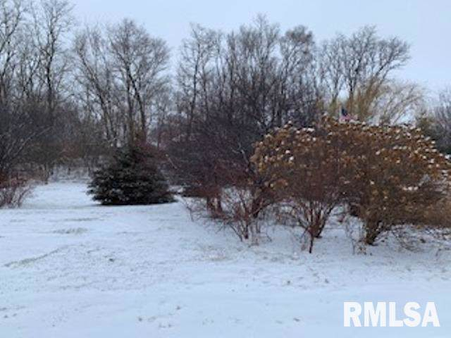 00 N Route 29 Highway, Chillicothe, IL 61523 (#PA1212179) :: RE/MAX Preferred Choice