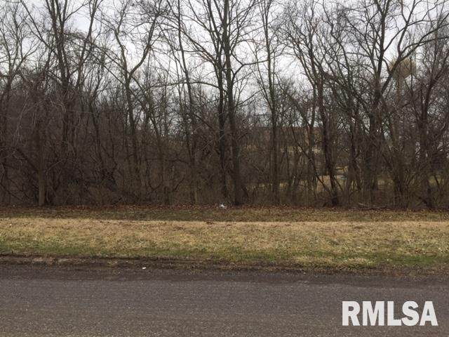 Apple Drive, Metamora, IL 61548 (#PA1213411) :: RE/MAX Preferred Choice