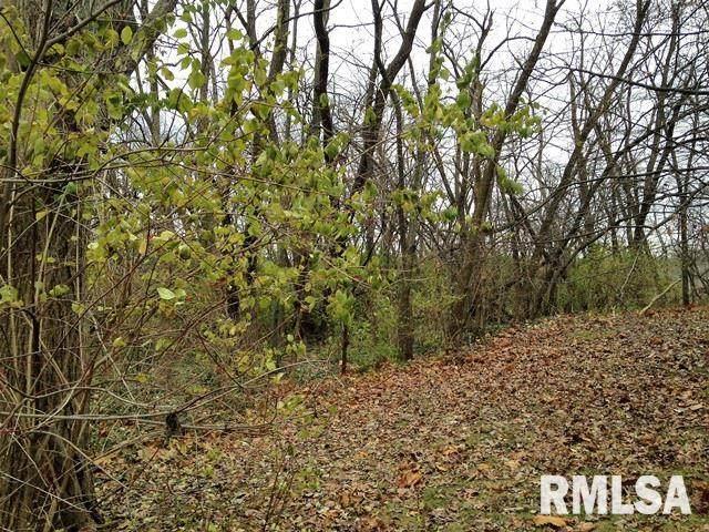 Lot 86 Bacon Drive, Peoria, IL 61614 (#PA1213866) :: RE/MAX Professionals