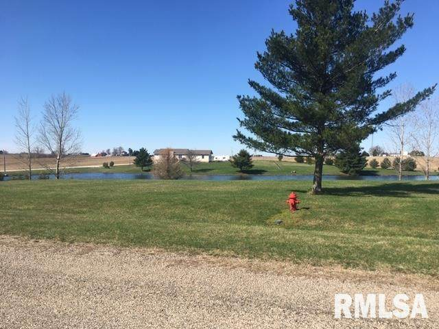 Lot 5 Lake Court, Secor, IL 61771 (#PA1213869) :: RE/MAX Preferred Choice