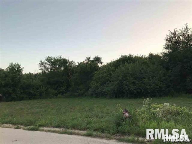 1030 Ravina Drive, Chatham, IL 62629 (#CA998995) :: Killebrew - Real Estate Group