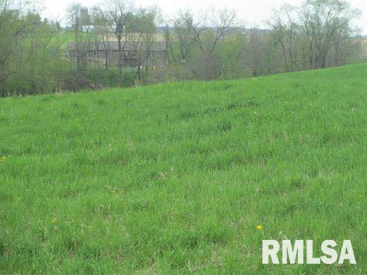 Lot 11 Timber Lane, Tipton, IA 52772 (#QC4211529) :: Killebrew - Real Estate Group