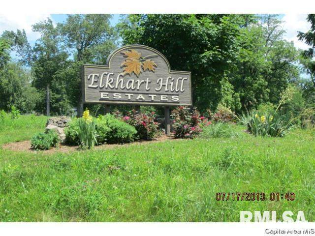 4 Governors Drive, Elkhart, IL 62634 (#CA1001114) :: Killebrew - Real Estate Group