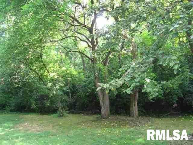 Lot 14 Deer Hill Road, Pleasant Valley, IA 52767 (MLS #QC4213897) :: BN Homes Group