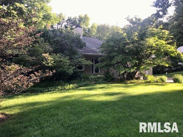 28205 221ST Street, Le Claire, IA 52753 (#QC4214330) :: Paramount Homes QC
