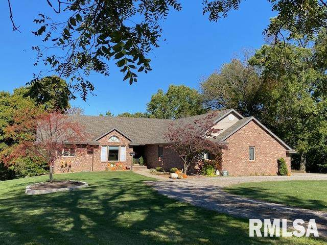 17269 Woodland Lakes Drive, Petersburg, IL 62675 (#CA1002957) :: Nikki Sailor | RE/MAX River Cities