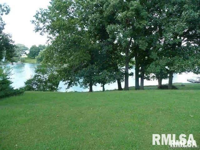 496 Juniper, Petersburg, IL 62675 (#CA1003043) :: Killebrew - Real Estate Group