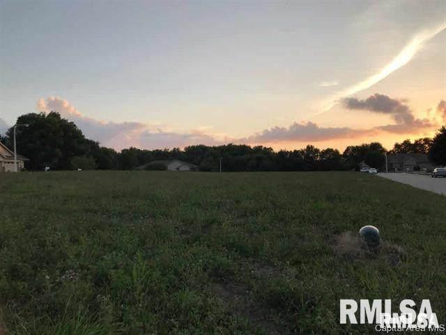 1011 Ravina Drive, Chatham, IL 62677 (#CA1006381) :: Paramount Homes QC