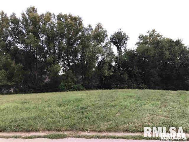 1048 Ravina Drive, Chatham, IL 62629 (#CA1006382) :: Paramount Homes QC